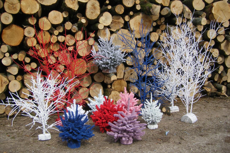 sapins de noël français - pépinière grange - sapins flockés couleur