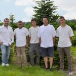 sapins de noël français - pépinière grange - Producteur de sapin de noel