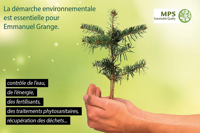 sapins de noël français - pépinière grange - démarche environnement