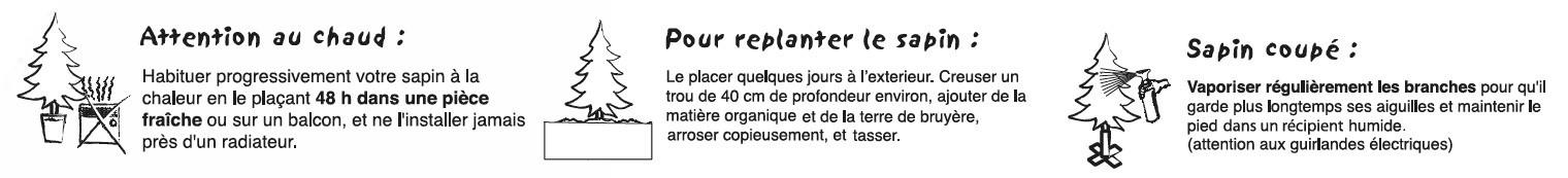 sapins de noël français - pépinière grange - soin du sapin
